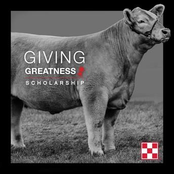 Giving Greatness Purina Scholarship