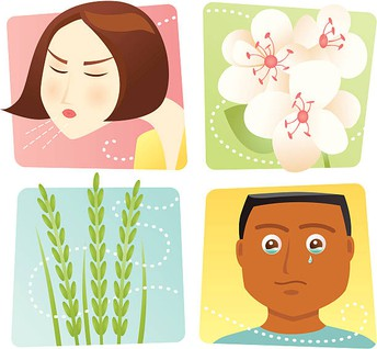 Allergy Season is right around the corner!