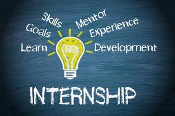 SCN Internship Program