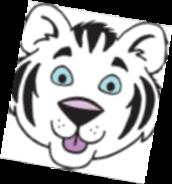 Campamento cachorro de tigre 2021 del Distrito #303