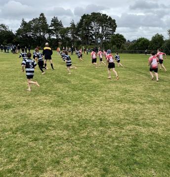 Interschool Rugby
