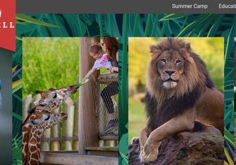 Daily-Caldwell Zoo