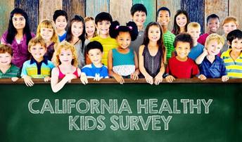 California Healthy Kids Parent Survey (CHKS)