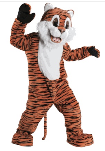 Help us Name our Tiger!