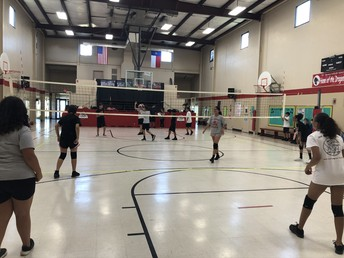 Volleyball ending strong, Last Home Game on Tuesday