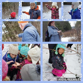 Students exploring winter wilderness at Little Cataraqui Conservation Area