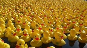 PCO Annual Pawtucket Duck Race