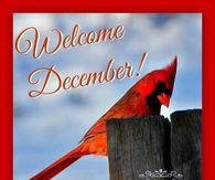 December 2-6