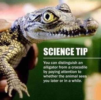 Science tip