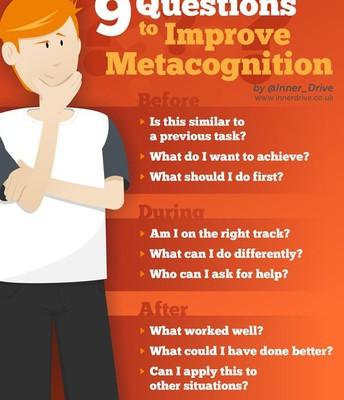 Metacognitive Questions