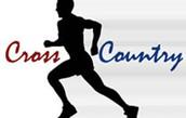 Arrowhead Grade School Cross Country Run
