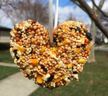 How to Make Cookie-Cutter Bird Feeders