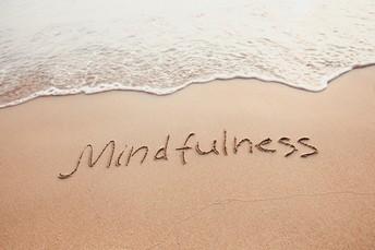 Mindfulness Survey