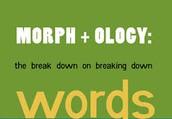 Morphological Families