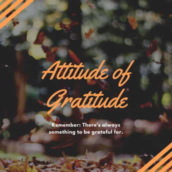 Gratitude: Cultivating an appreciation for what we already have