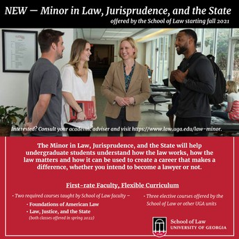 Minor in Law, Jurisprudence, and the State