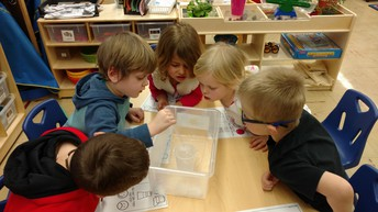 Students do experiments with ice!