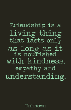 Mindset Monday February Topic: Fostering Friendship & Empathy