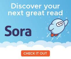 SORA IS HERE!