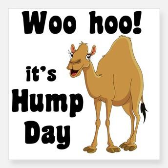 HUMP DAY TREATS