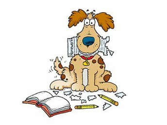 The Dog Ate My Homework!    HOMEWORK EXPECTATIONS