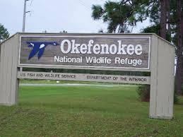 OKEFENOKEE WILDLIFE ADVENTURE 0N 21 APRIL