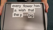 Magnetic Poetry