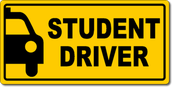 Driver's Education Camp