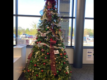 Our SJH staff tree is beautiful!