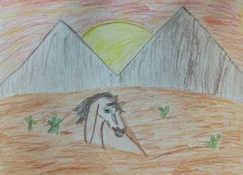 A. R. 5th Grade