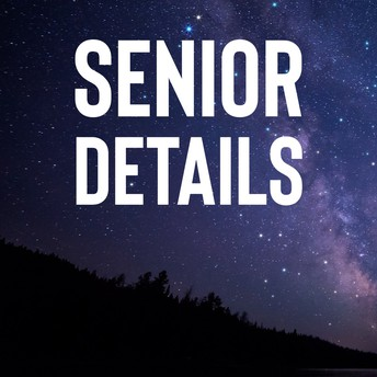 senior prom info graphic