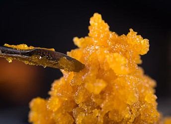 Cannabis Concentrate