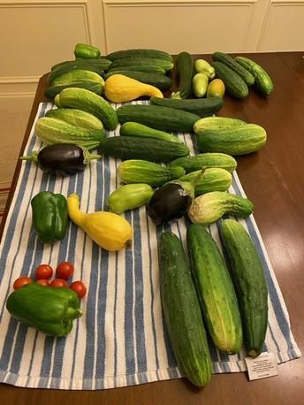 Smithfield's Generous Garden