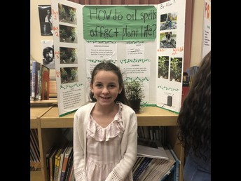 Grade 5 Science Fair