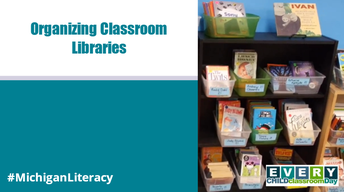 chapter books sorted in a classroom library