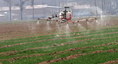 Drone Cropdusting