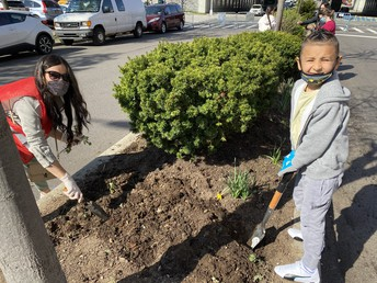 Community Cleanup Gardening Project