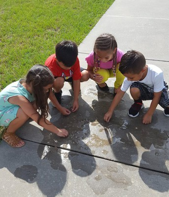1st grade observing the effects of heat