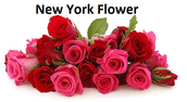A Glance At No-Hassle Secrets For New York Flower