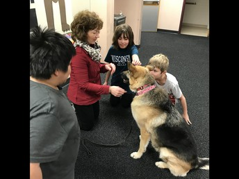Dog Therapy at Wilder