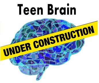 Decoding the Teenage Brain