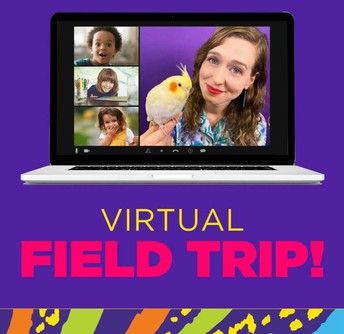 Vista Kids Virtual Field Trip