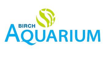 Summer Internship at Birch Aquarium