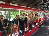Riding the Zoo Train!