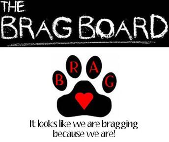 BRAGS