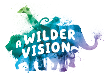 Connect2Texas: A Wilder Vision