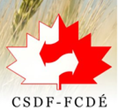 The Canadian Student Debating Federation has debate guides on various styles of debate, research aids, and judging guides.