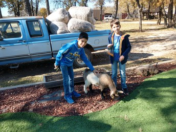 MS Outreach to Shady Oaks Ranch