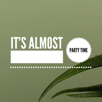 Party Theme #1 Post #4 Image