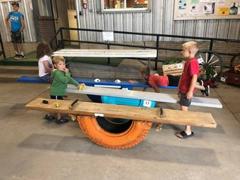 Friends of Saunders County 4-H & Extension Foundation seeking ideas